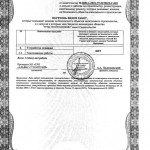 "Certificate of Admission to Plug Operations, issued by ""Alyans Stroitelei"", Page 2"